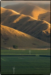 Early morning light in the Awatere Valley